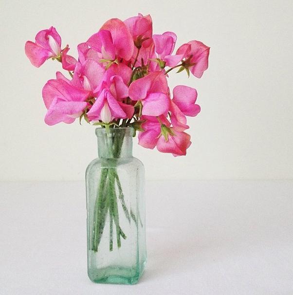 FloralFridayDecember 008.jpg