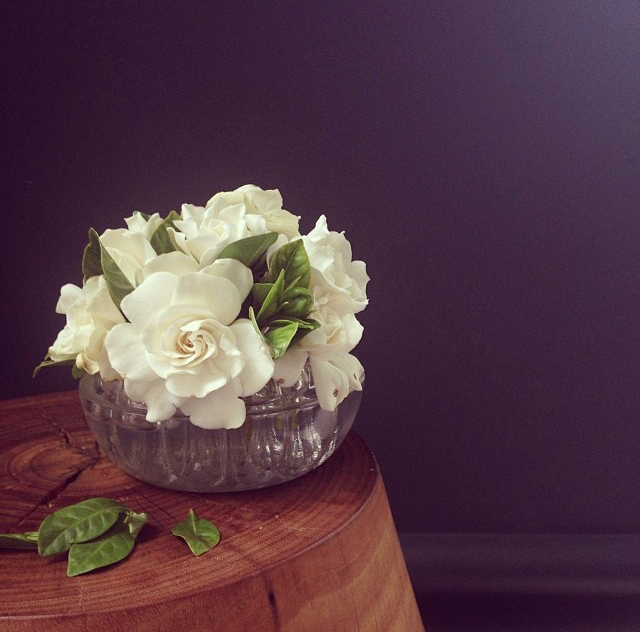 FloralDecember 003.jpg