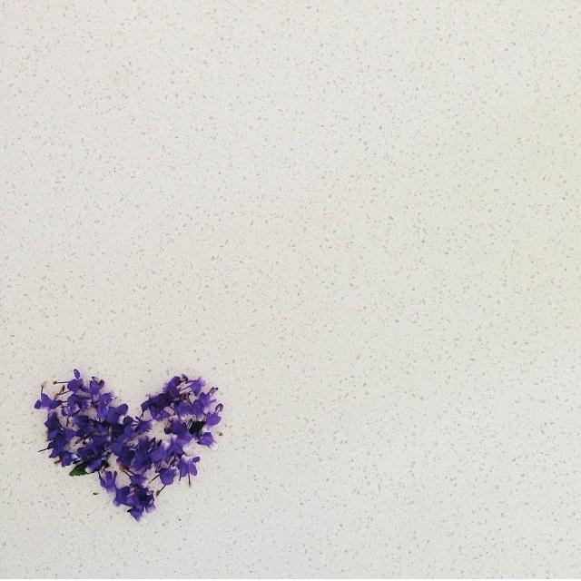 FloralDecember 005.jpg