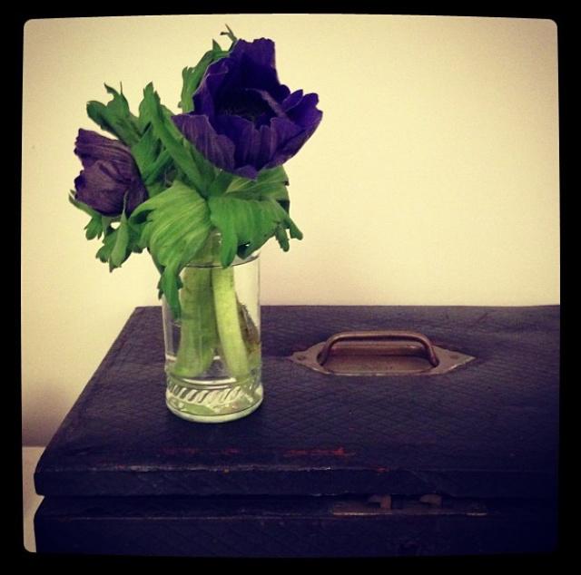 FloralDecember 007.jpg
