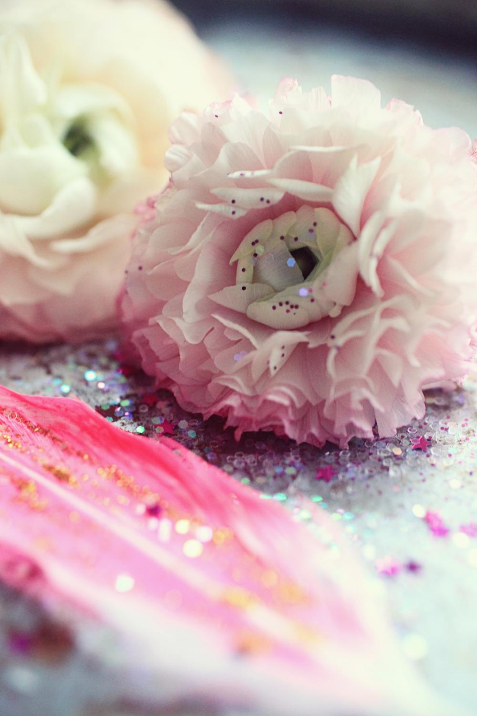 pink ranunculus  013.jpg