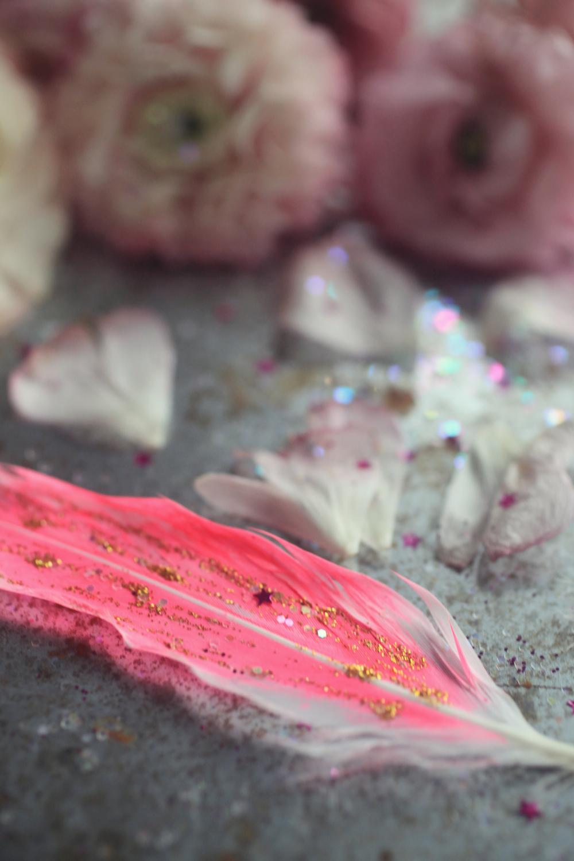 pink ranunculus  017.jpg