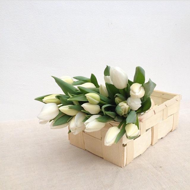 floraljan 033.jpg