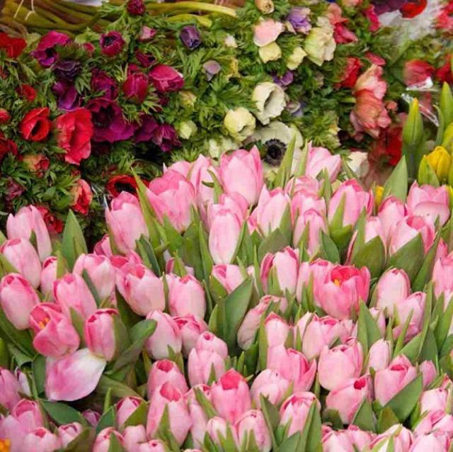 floraljan 041.jpg
