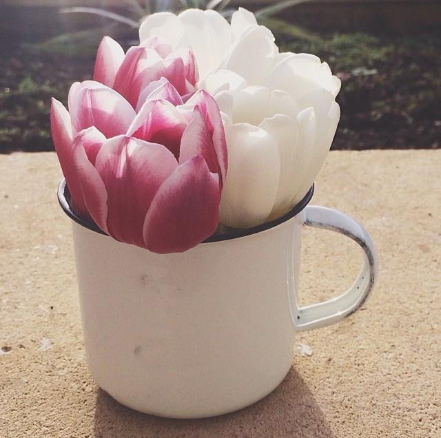 floraljan 038.jpg