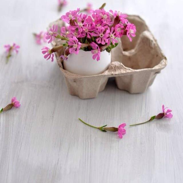 FloralFeb 7.jpg