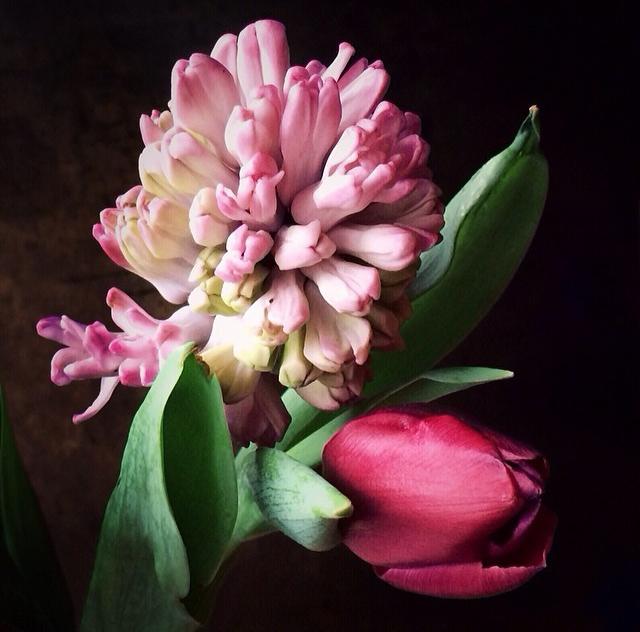 FloralFeb 30.jpg