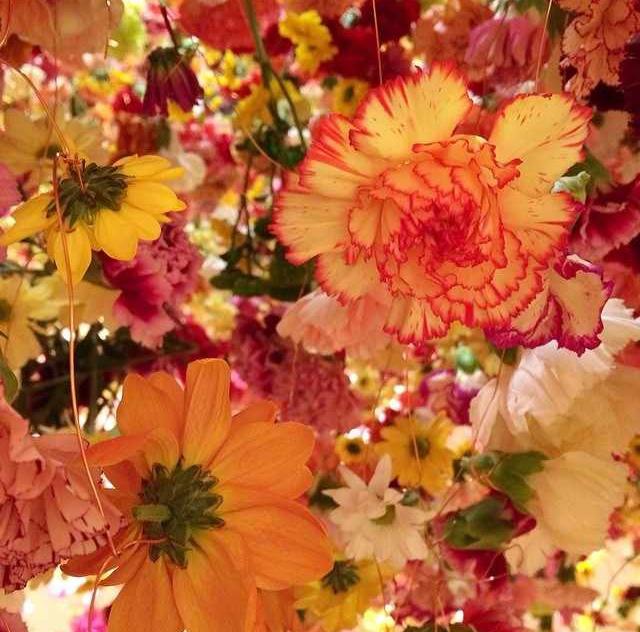 floralfeb 51.jpg