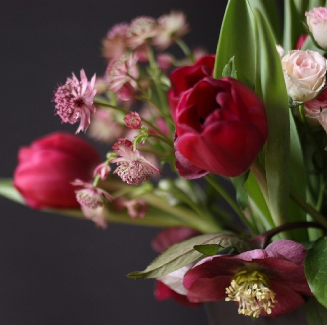 floralfeb 47.jpg