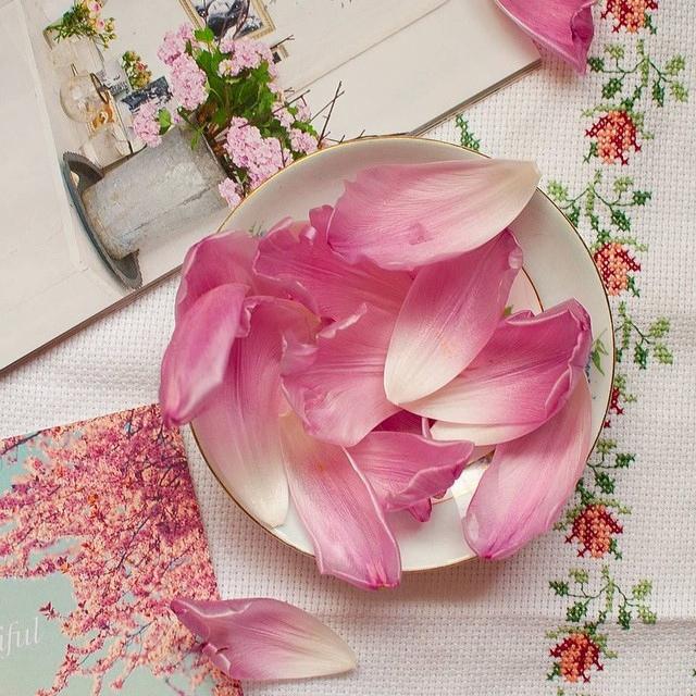 floralfeb 46.jpg
