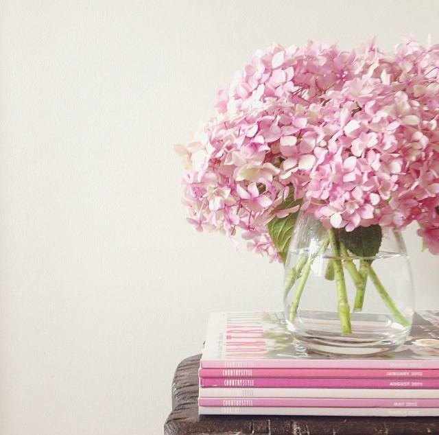 floralfeb 41 (1).jpg
