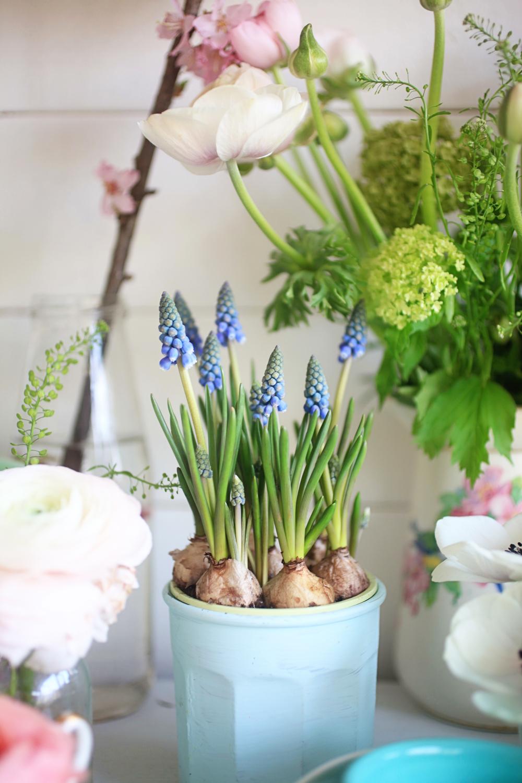 springflowers5.jpg