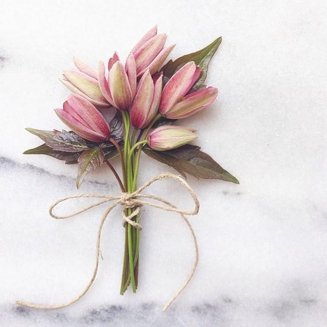 floralapril 8.jpg