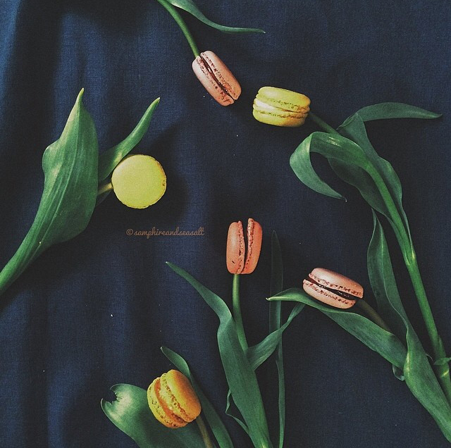 FloralFridayMay 104.jpg