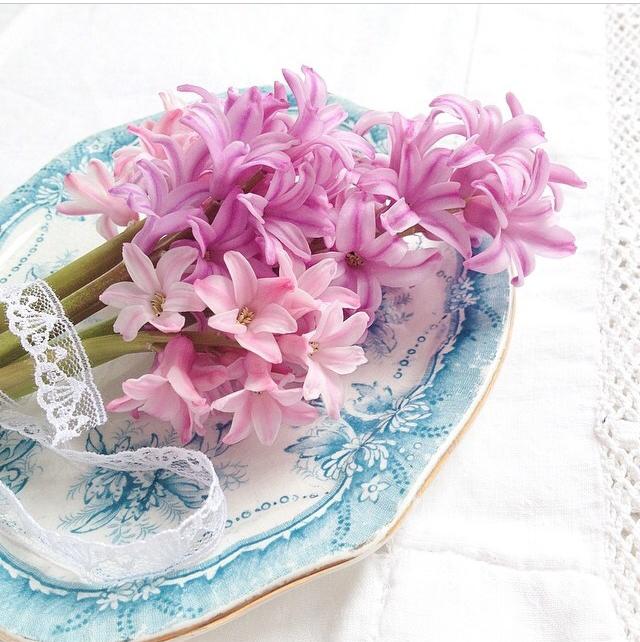 FloralFridayMay 111.jpg