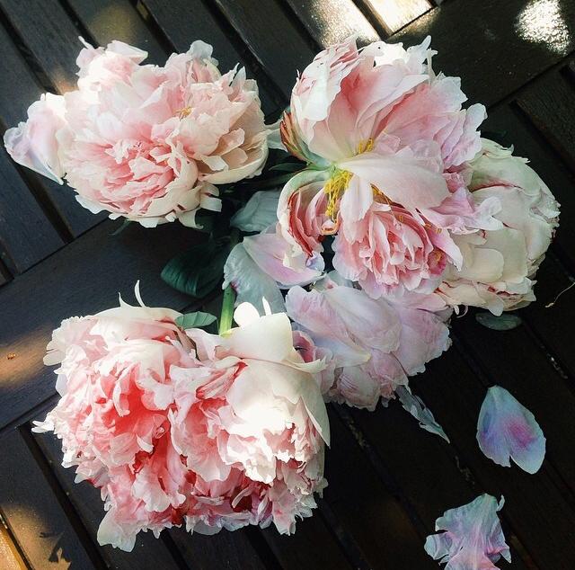 FloralMay 144.jpg