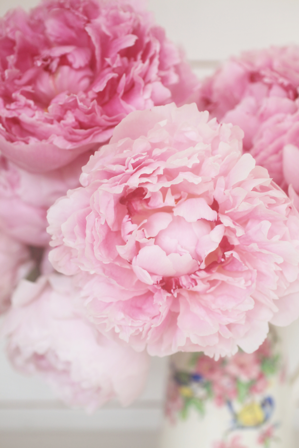 Peonies by Emily Quinton, Makelight