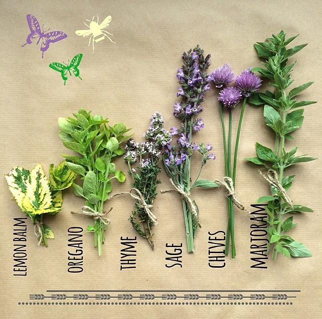 FloralFridayMay 156.jpg
