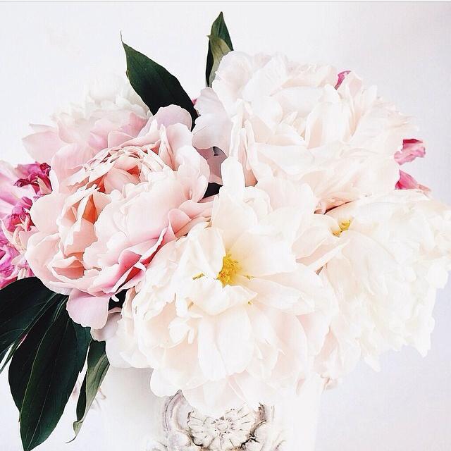 FloralFridayMay 151.jpg