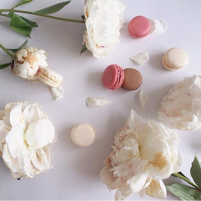 FloralFridayJune 6.jpg