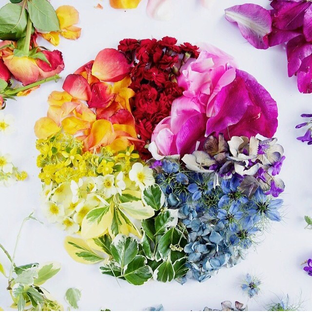 FloralFridayJune 23.jpg