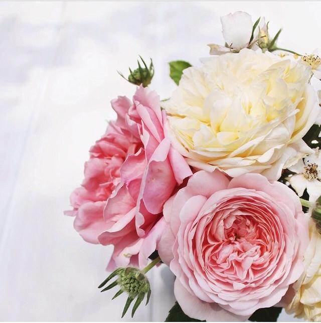 FloralFridayJune 53.jpg