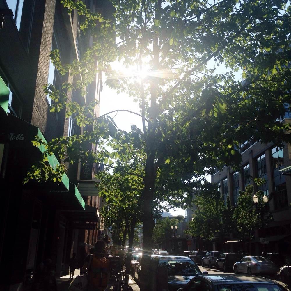 Green Portland