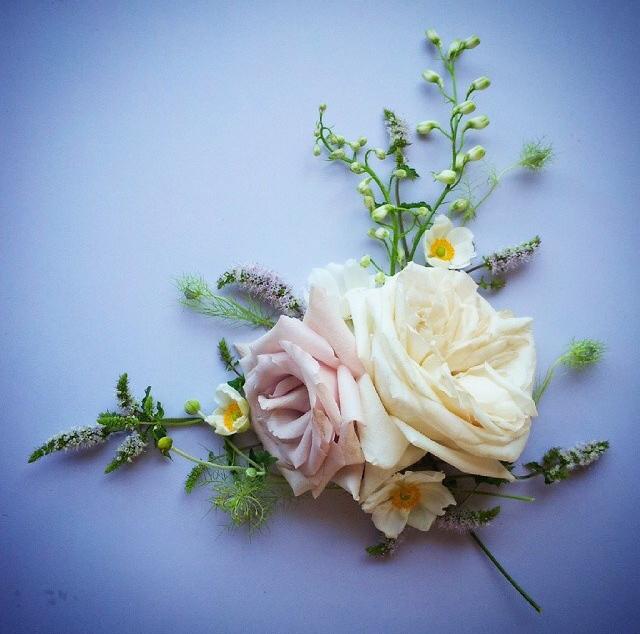 FloralFridayAugust 10.jpg