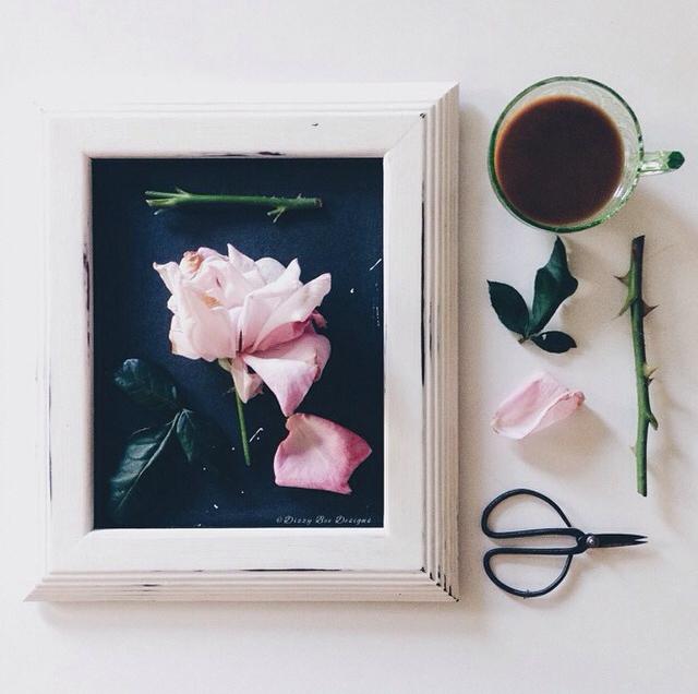 FloralAugust 12.jpg