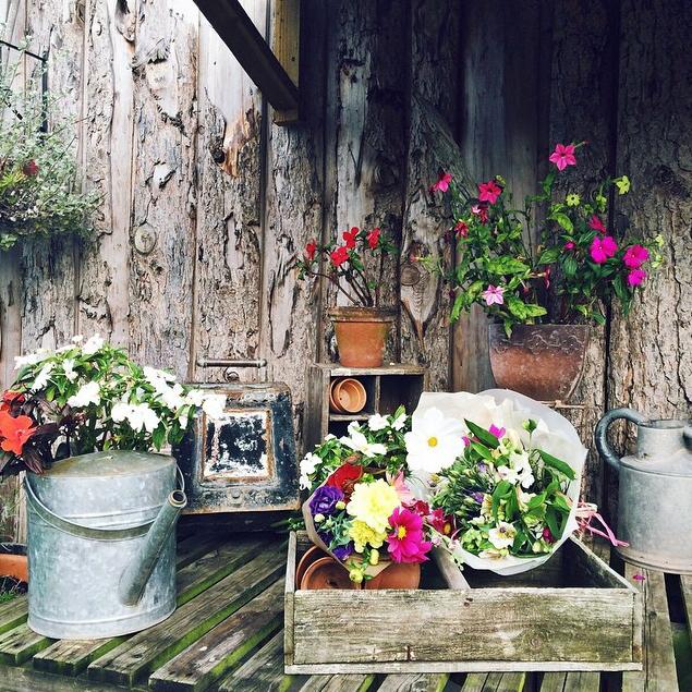 FloralSeptember 4.jpg