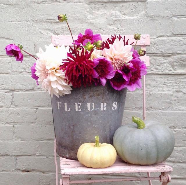 FloralSeptember 5.jpg