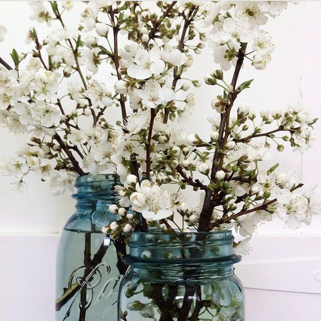 FloralSeptember 11.jpg