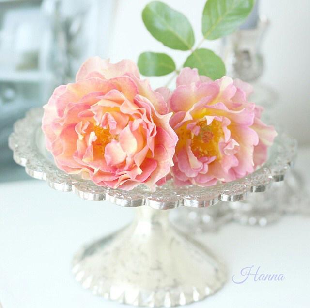 FloralSeptember 15.jpg