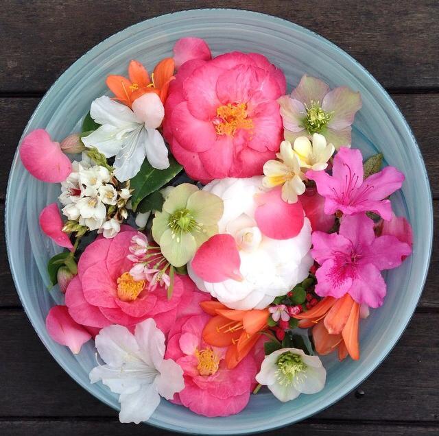 FloralSeptember 34.jpg