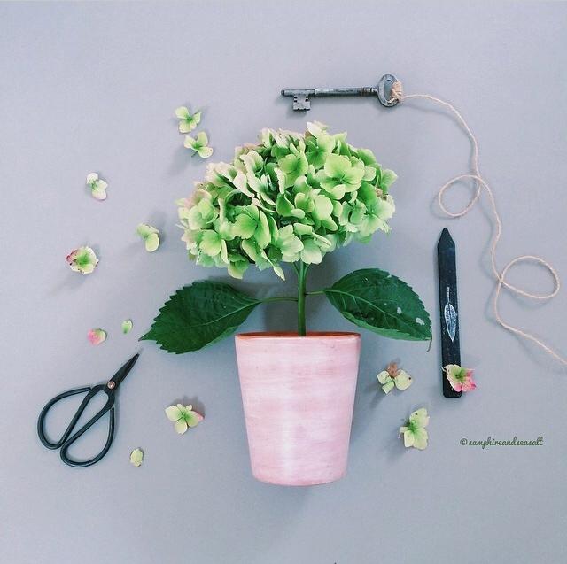 FloralSeptember 39.jpg