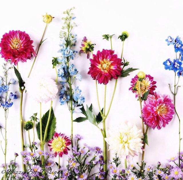 FloralSeptember 41.jpg