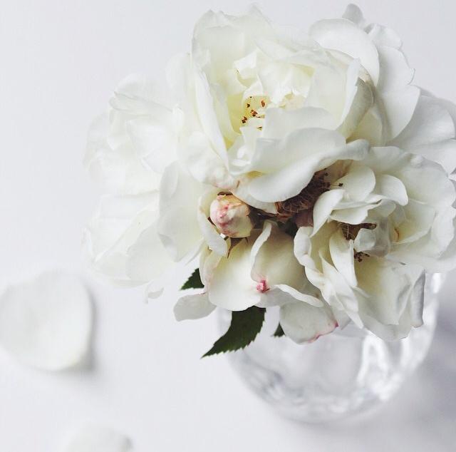 FloralSeptember 42.jpg
