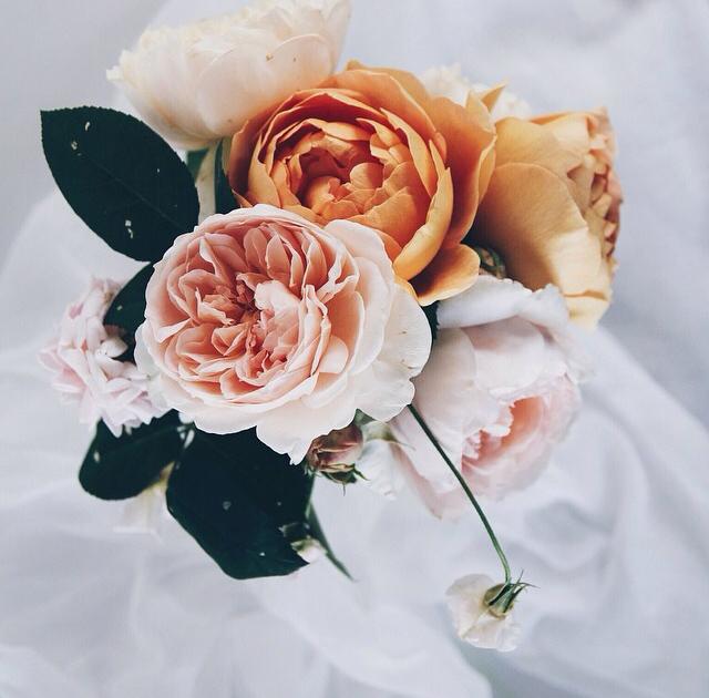 FloralSeptember 45.jpg
