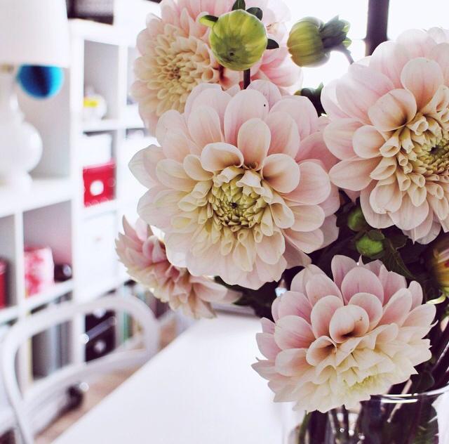 FloralSeptember 37.jpg