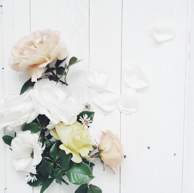 FloralOctober 40.jpg