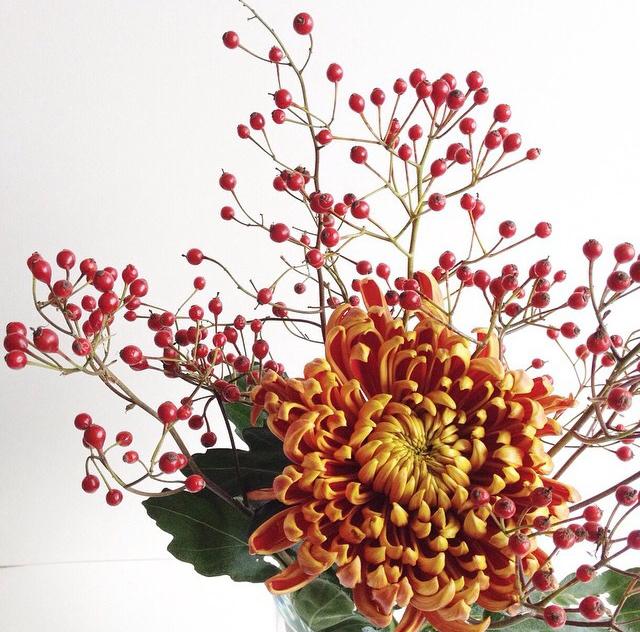 FloralOctober 53.jpg