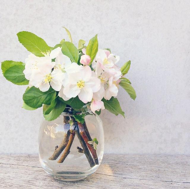 FloralOctober 54.jpg