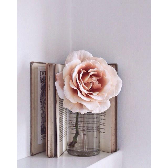 FloralOctober 69.jpg
