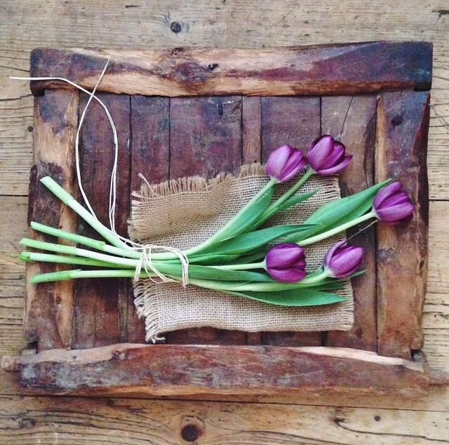 FloralOctober 81.jpg