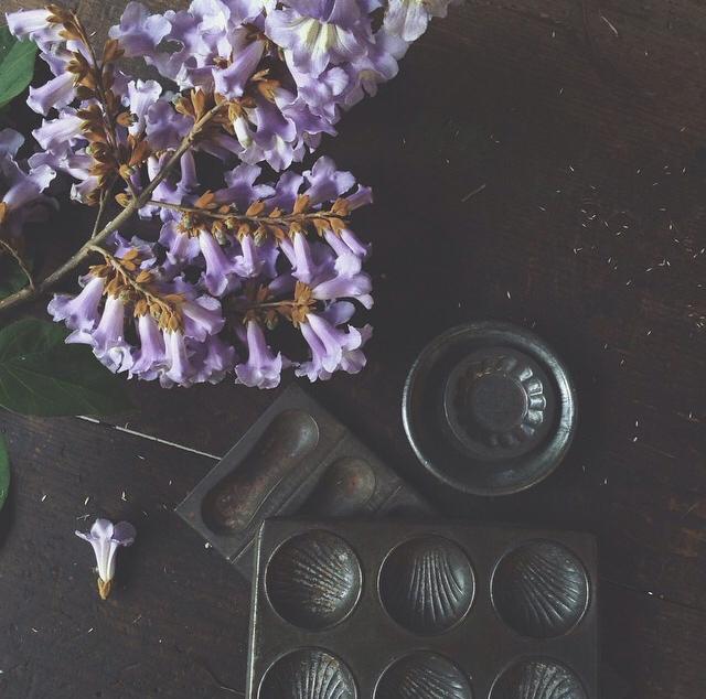 FloralOctober 89.jpg