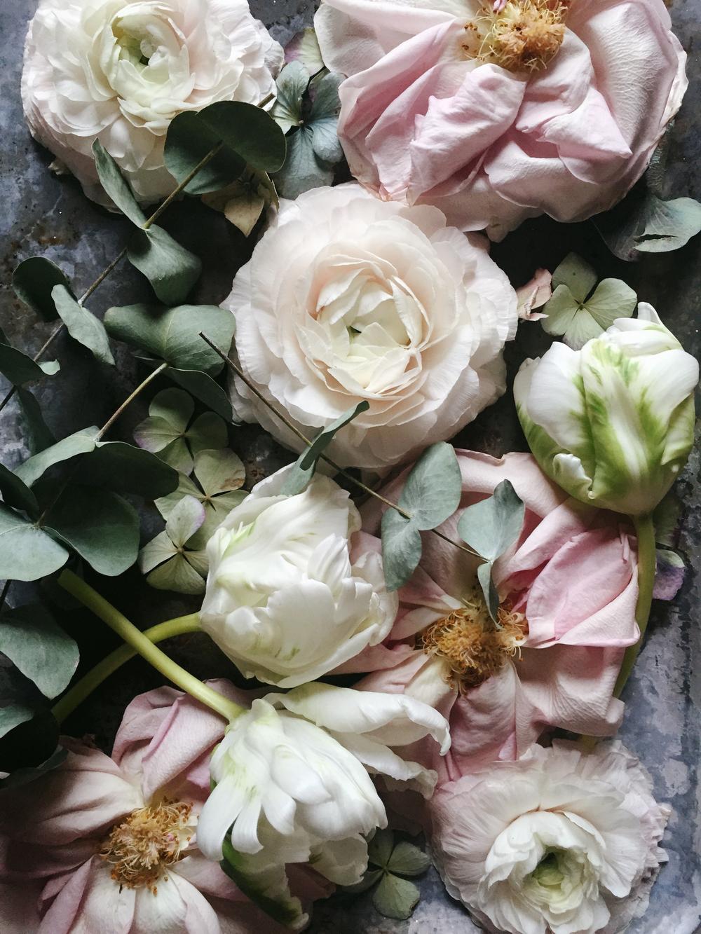 Emily Quinton Botanicals 12.jpg