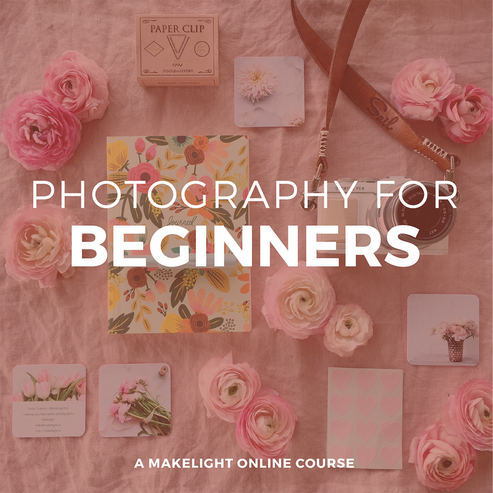 Our popular Beginners class covers all aspects of using a camera or phone to get great images. Gain confidence and learn with others at the same stage. Starts 6th June.