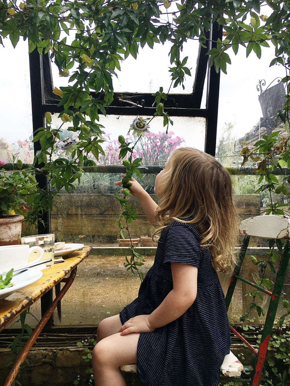 Petersham Nurseries : Makelight