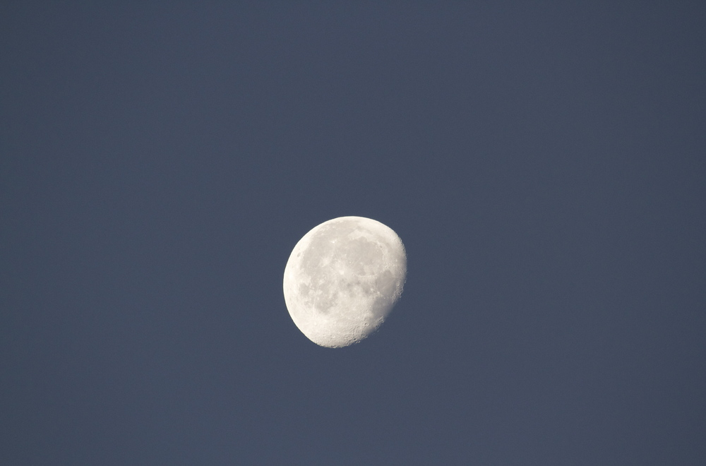 Waning New Years moon at dawn.