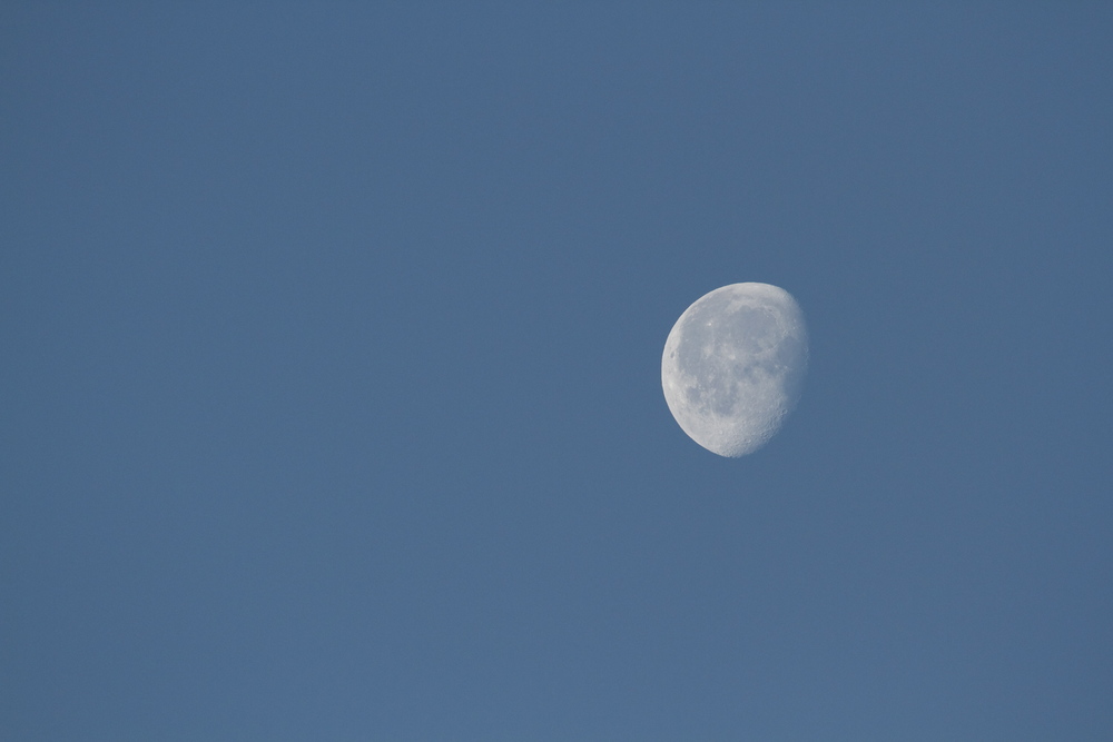 The waning moon in the morning sky.